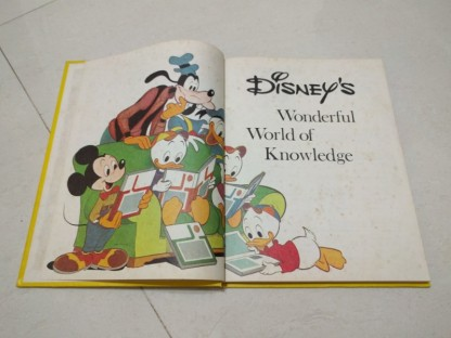 disneybook3